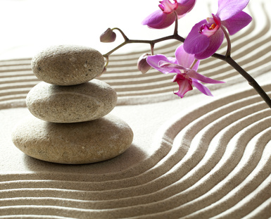 zen-gestion-locative-guadeloupe